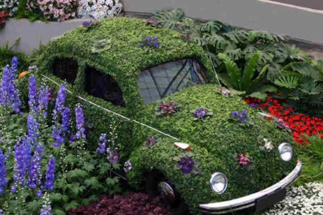 auto maggiolino ricoperta di prato e fiori